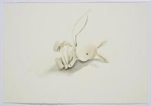 Bunny Reclining