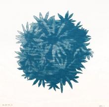 Blue Bloom Ball