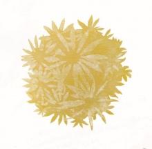 Yellow Bloom Ball