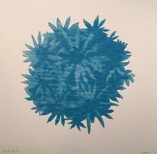 Bloom Ball - Blue